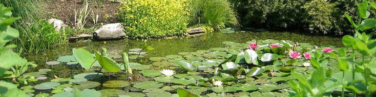 PA_0028_00_Botanická zahrada města Padova - Italie - cestování - dovolená v itálii - Panda na cestach - panda1709